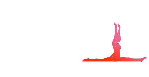 Excellence Gymnastic Academy